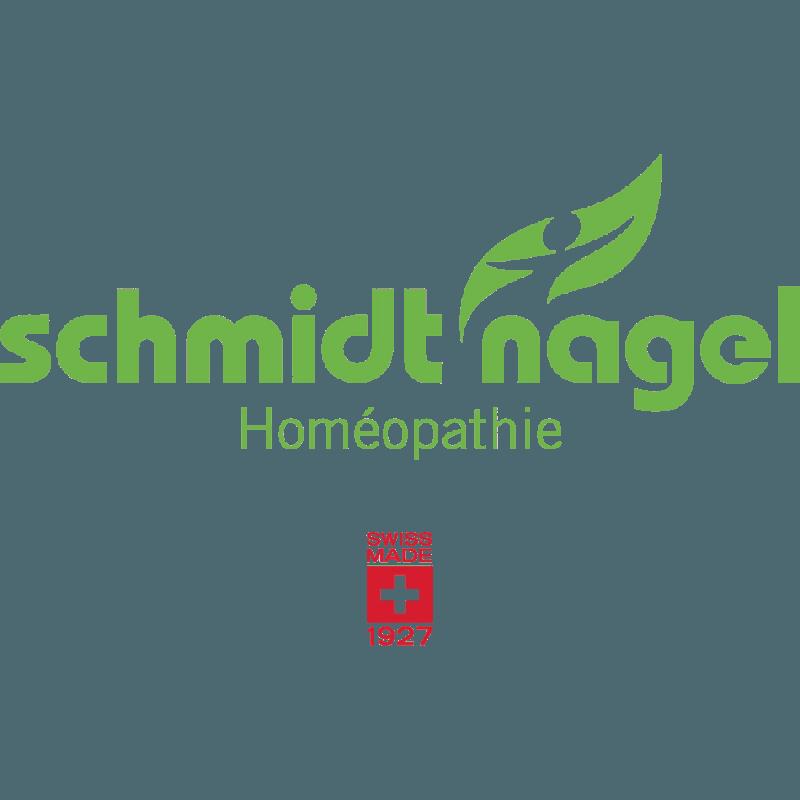 Schmidt Nagel