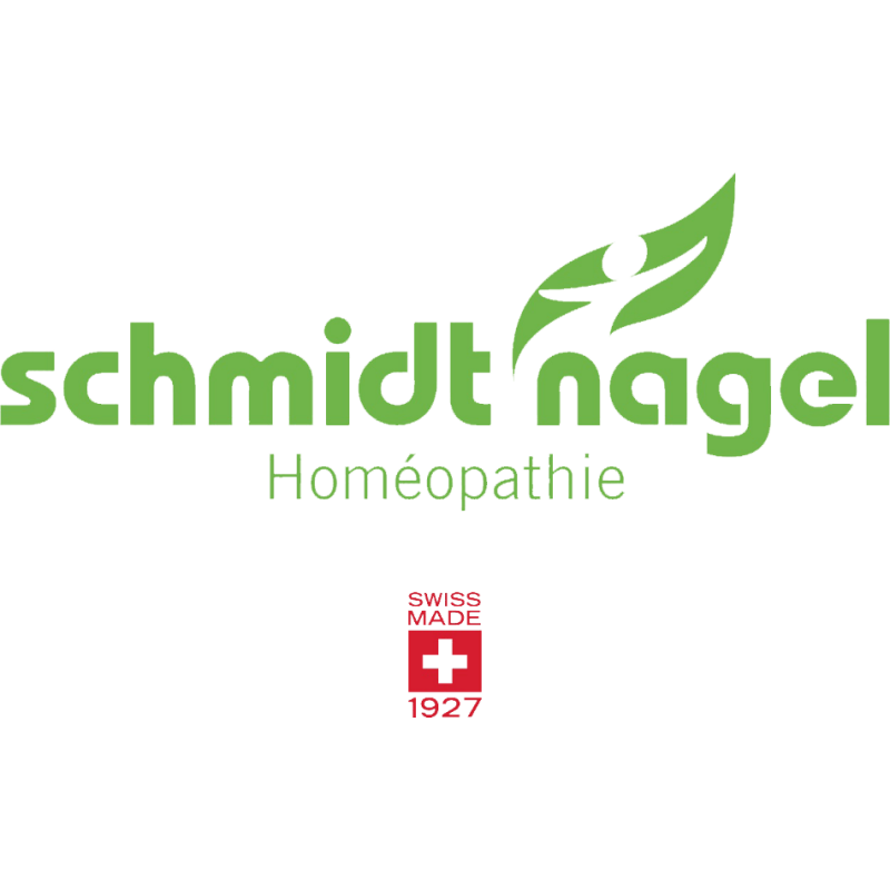 logo Schmidt Nagel