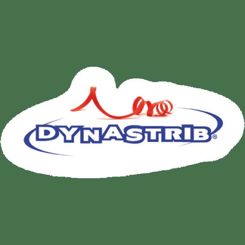 logo dynastrib